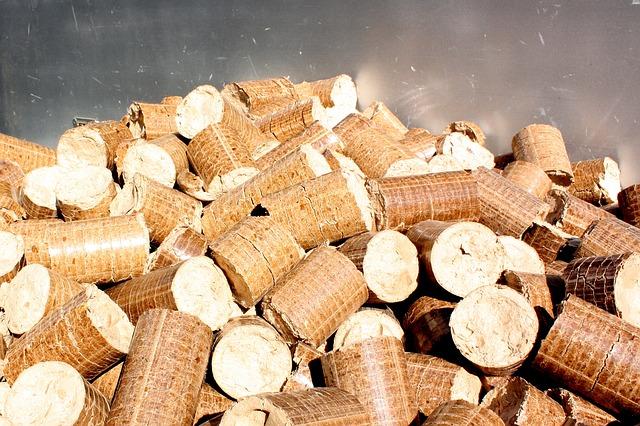 biofuels: pellets and briquettes